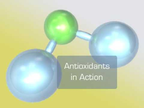 Antioxidants vs. Free Radicals.key
