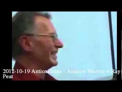 2012-10-19 Antioxidants – Andrew Murray + Ray Peat