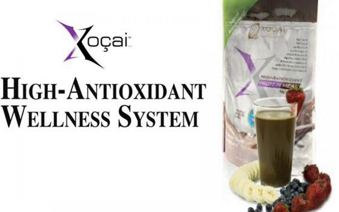 X-Protein High Antioxidant Wellness Shake