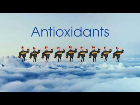 How do antioxidants keep you healthy?