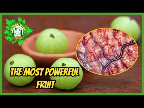 The Most Powerful Fruit, Filled With Antioxidants That Has 20 Times More Vitamin C Than Orange Juice