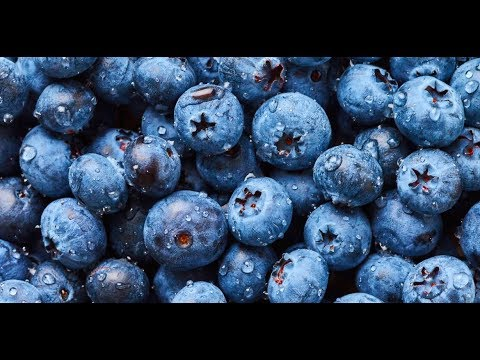 Blueberries: Antioxidants and Other Blueberry Benefits