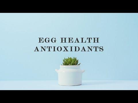 Egg Health Antioxidants
