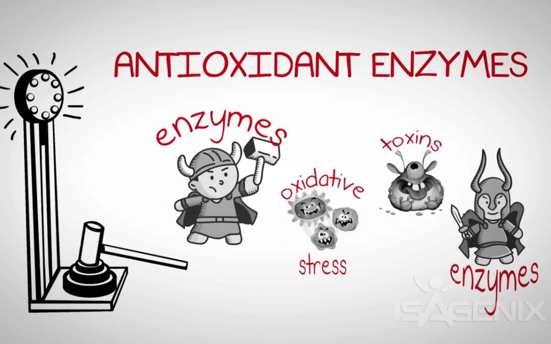 Myth: All Antioxidants Are The Same