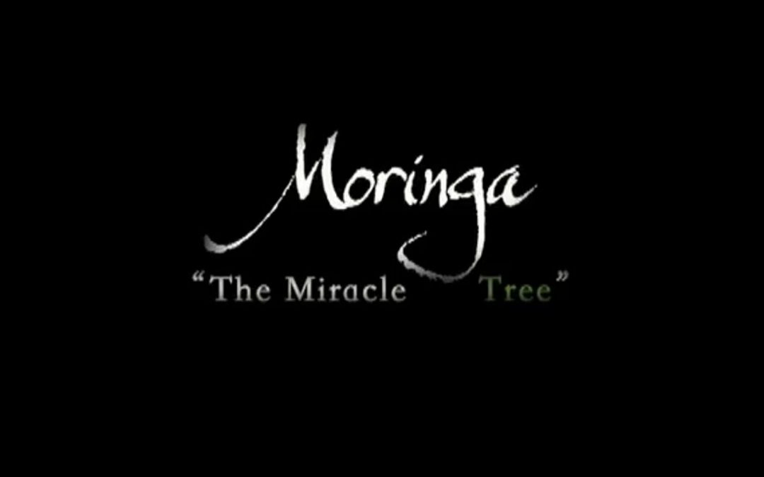 Zija Moringa Oleifera – Discovery Channel Documentary