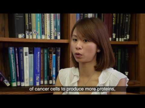 Novel drug therapy kills pancreatic cancer cells by reducing levels of antioxidants