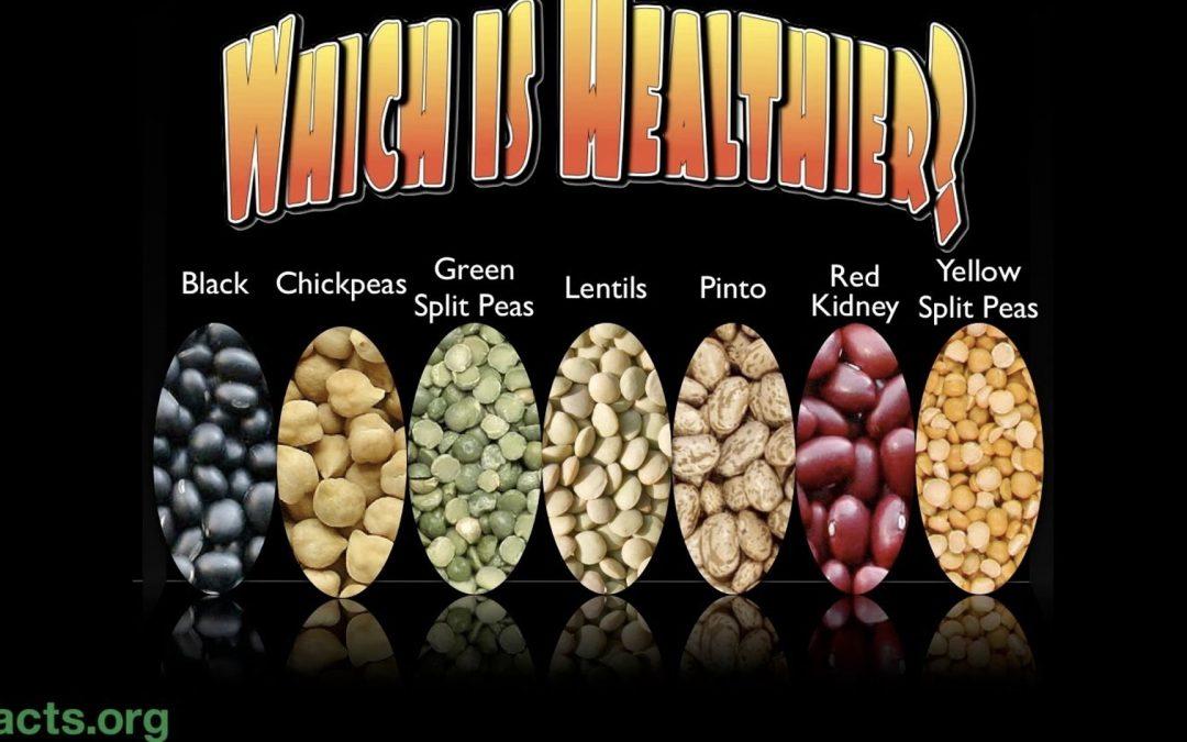 The Best Bean