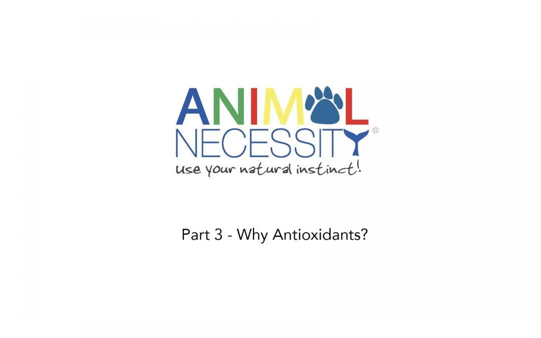 Part 3 – Why Antioxidants-