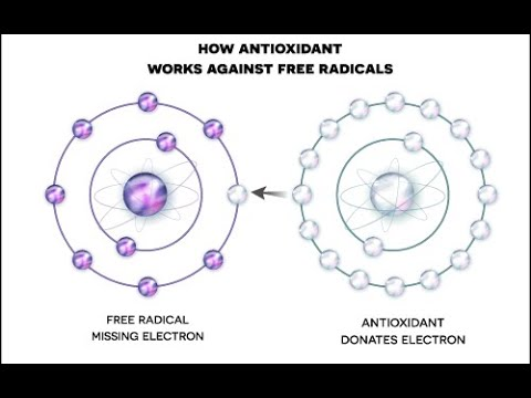 Does a water ionizer make antioxidants? | Learn about ORP & Hydrogen in Water